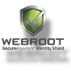 Webroot SecureAnywhere Antivirus Product - Houston TechSys
